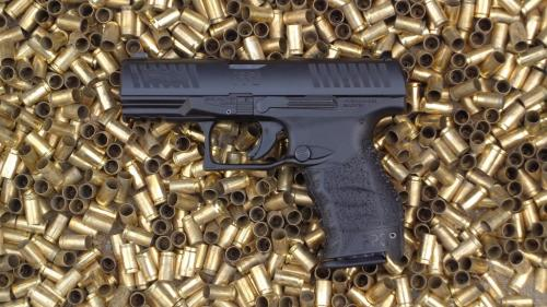 Walther PPQ 2017 (49)